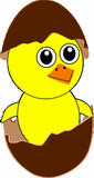Kuřátko