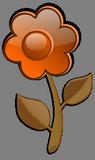 Oranžová květina