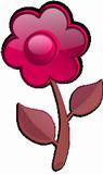 Růžová květina