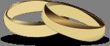 Snubn� prsteny