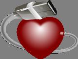 USB srdce