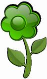 Zelen� kytka